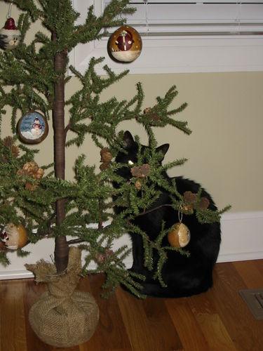 Christmas Cat & Santas 06 004