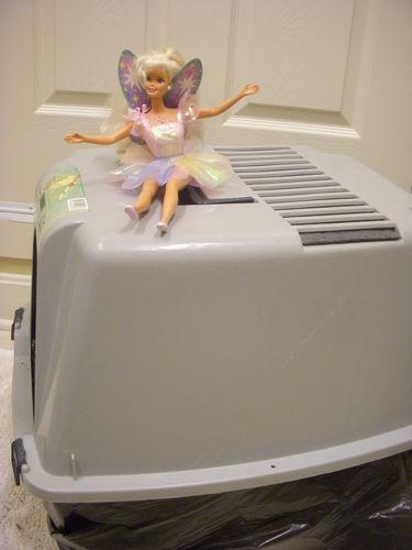 Pk Fairy 16