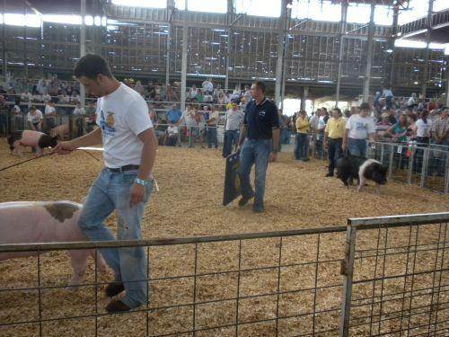 Pk at fair 11