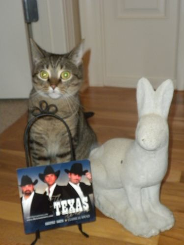 Tex ten 9