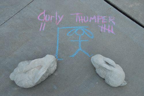 Pk chalk 4